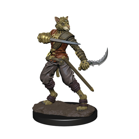Tabaxi Male Rogue W6