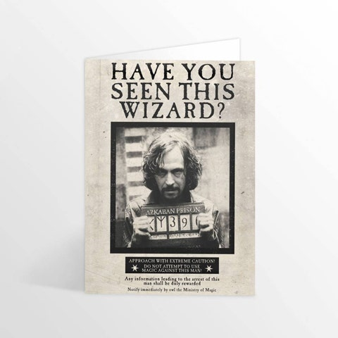 Have You Seen This Wizard Lenticular Greeting Card