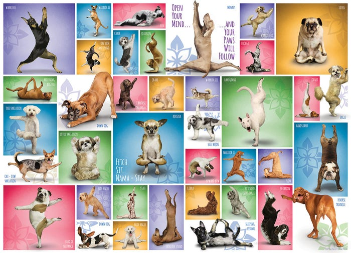 Yoga Dogs Puzzle (1000)