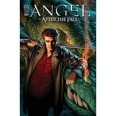 Angel After The Fall Volume 1