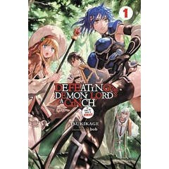 Defeating the Demon Lord's a Cinch (If You've Got a Ringer) Light Novel, Vol. 1