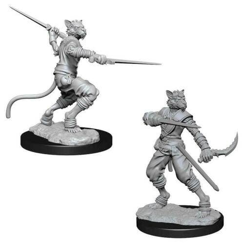 Tabaxi Male Rogue W7