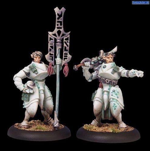 Dawnguard Invictor Officer & Standard Bearer