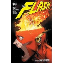 The Flash Volume 9: Reckoning of the Forces