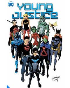 Young Justice Book Two: Growing Up