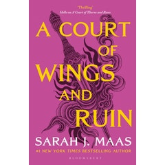 A Court of Wings and Ruin: The #1 bestselling series