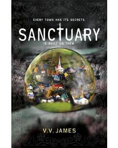 Sanctuary: The SUNDAY TIMES bestselling thriller with a shocking twist!