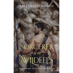 The Sorcerer of the Wildeeps