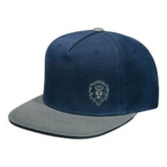 Team Alliance Blue & Grey Snap Back Hat