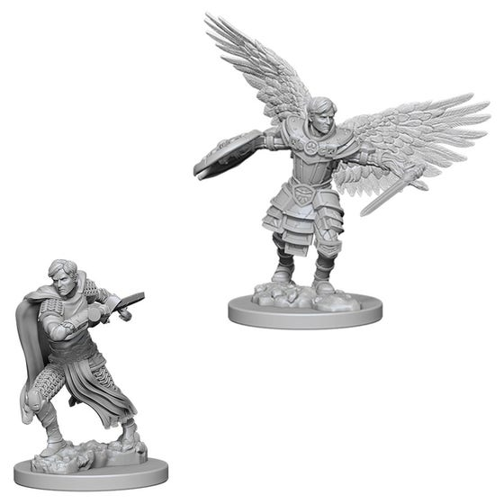 Aasimar Male Fighter W6
