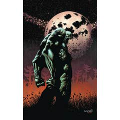 Swamp Thing The Dead Don't Sleep