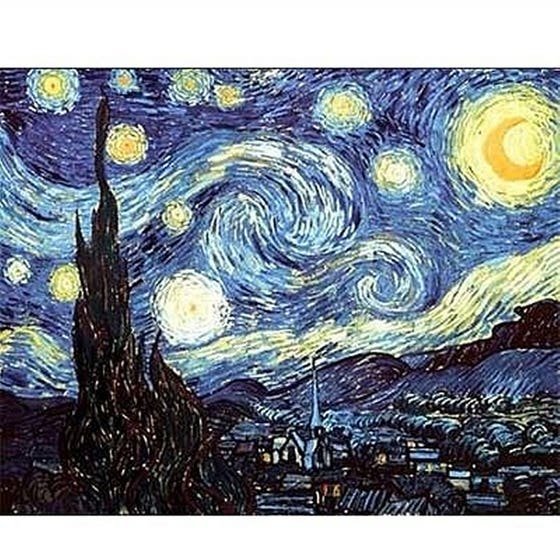 Starry Night Puzzle (1000)