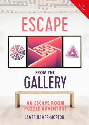 Escape from the Gallery: An Entertaining Art-Based Escape Room Puzzle Experience