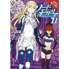 Is It Wrong to Try to Pick Up Girls in a Dungeon? Sword Oratoria, Vol. 11 (light novel)