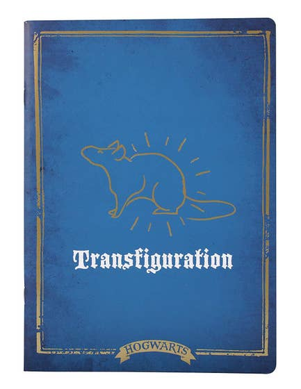 Transfiguration Exercise A4 Notebook