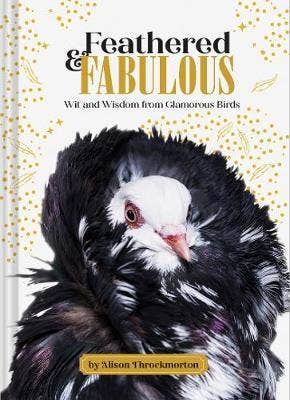 Feathered & Fabulous: Wit and Wisdom from Glamorous Birds