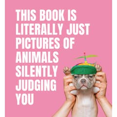 This Book is Literally Just Pictures of Animals Silently Judging You