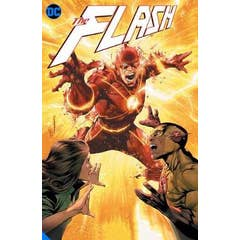 Flash Volume 13: Rogues Reign