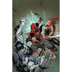 Red Hood: Outlaw Volume 3: Generation Outlaw