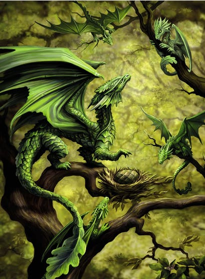 Forest Dragon By Anne Stokes Puzzle (500)