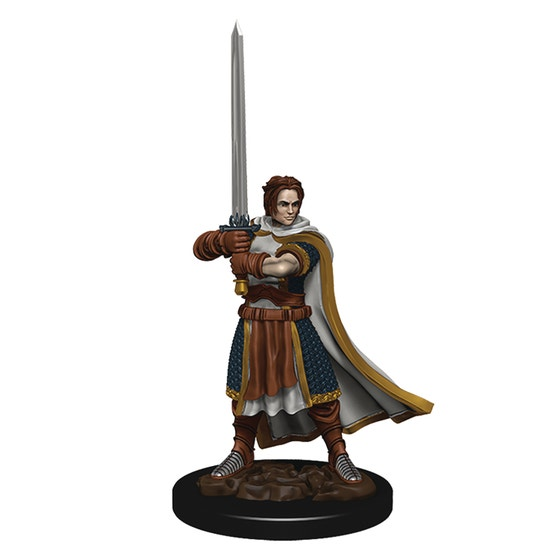 D&d Icons Realm Premium Painted Fig Human Cleric Male