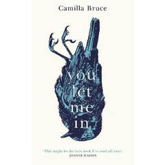 You Let Me In: The acclaimed, unsettling novel of haunted love, revenge and the nature of truth