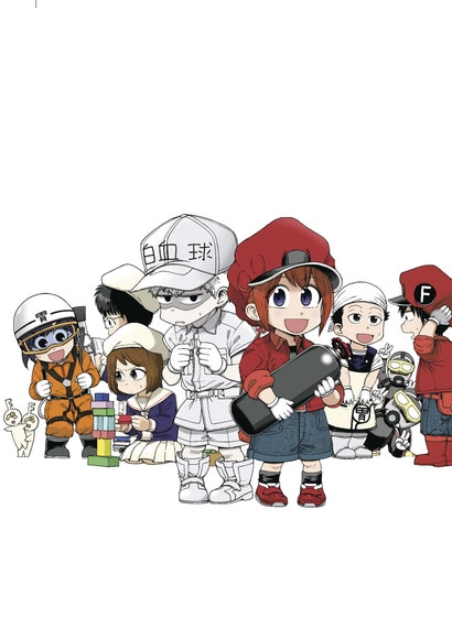Cells At Work Baby Vol. 03